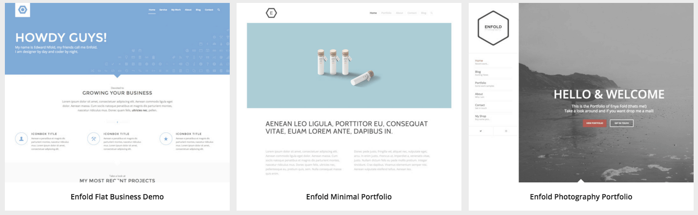 Enfold_WordPress_themes